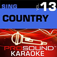 Sing Country Vol. 13 [KARAOKE]