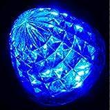 yemsy style LED マーカー ランプ トラック サイドマーカー ライト 24V トラック 大型 中型 (02: 青 10個セット)