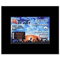 SOUND ISLAND FESTIVAL 2012 - James Echo & Bunnymen Mini Poster - 21x13.5cm
