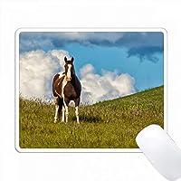 アメリカ、ワシントン州、セントジョン丘の上の馬。 PC Mouse Pad パソコン マウスパッド