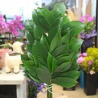 サカキ(本榊) 国産 1対 (2束) 販売 神棚やお稲荷様にお供えする木