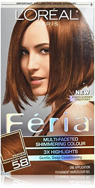 大惨事追うスクランブルFeria Bronze Shimmer by L'Oreal Paris Hair Color [並行輸入品]