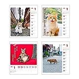アートプリントジャパン 2019年 猫川柳(週めくり) カレンダー vol.006 1000100943 画像