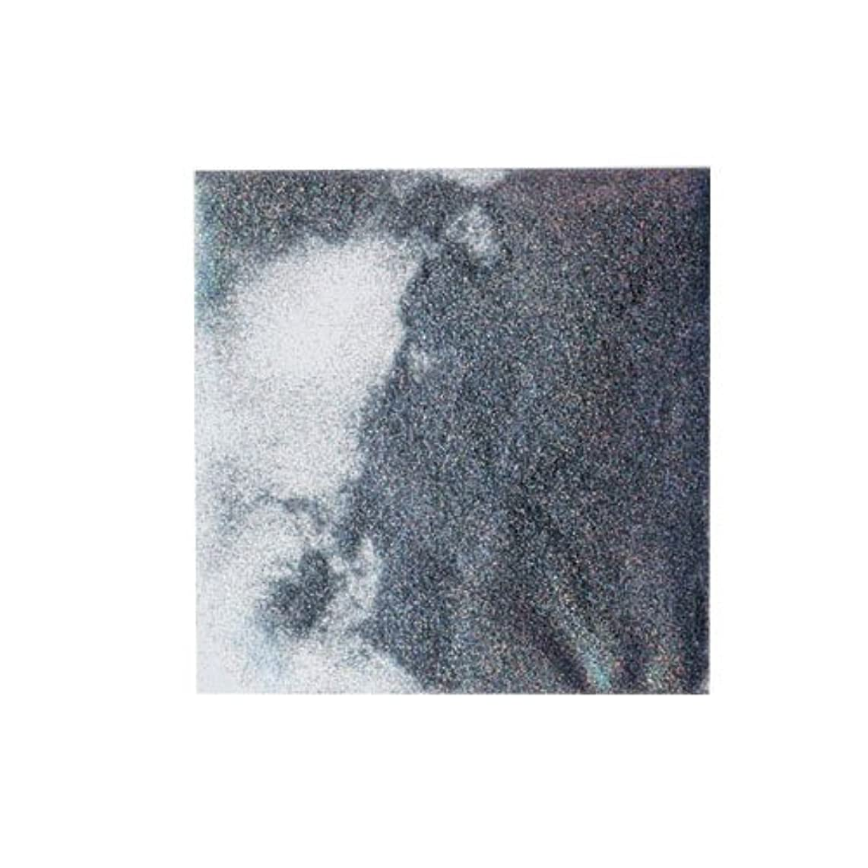 写真撮影漏れ忠実なピカエース ネイル用パウダー ホログリッター #801 シルバー 0.5g