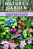 Nature's Garden: A Guide to Identifying, Harvesting, and Preparing Edible Wild Plants 画像