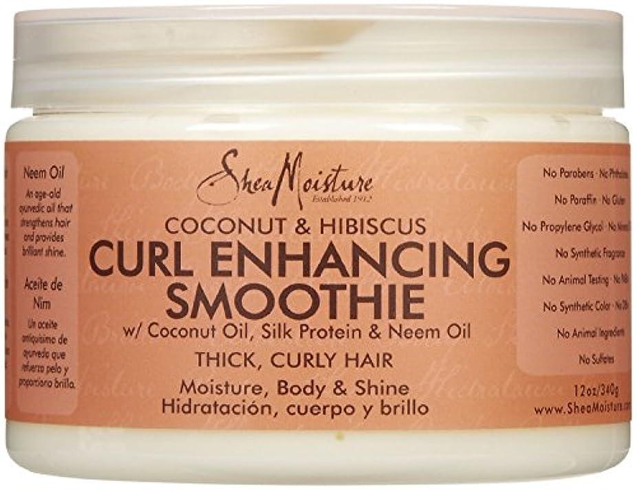 肝推論毒シーモイスチャー Shea Moisture Coconut Hibiscus Curl Enhancing Smoothie ヘアトリートメント
