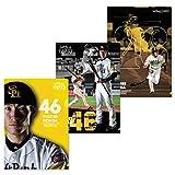 SoftBank HAWKS(ソフトバンクホークス) 2017選手クリアファイル3枚セット(本多)