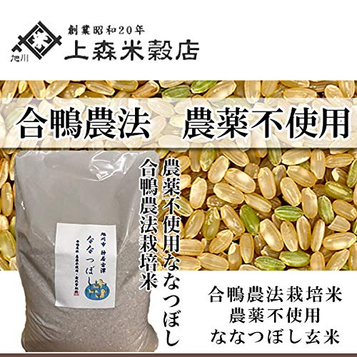 合鴨農法米ななつぼし 玄米 5kg 北海道産 農薬不使用玄米
