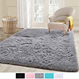 ECOBER Premium Velvet Fluffy Area Rug Plush Soft Carpet for Bedroom Living Room, Extra Comfy Furry Rugs Modern Solid Color Cute Carpets, 4x6 Feet Gray