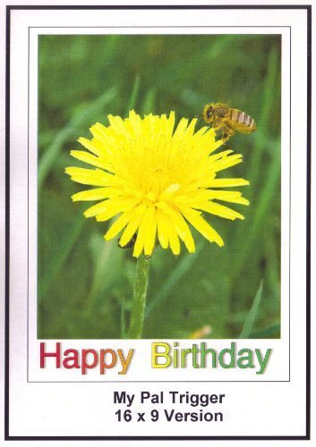 My Pal Trigger: Greeting Card: Happy Birthday Daughter by Roy Roger