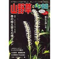 山野草とミニ盆栽 2009年 03月号 [雑誌]