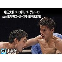 亀田大毅×ロドリゴ・ゲレーロ(2013) IBF世界スーパーフライ級王座決定戦【TBSオンデマンド】