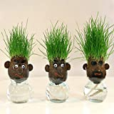 ヘアーラボ・ボーイズ(hair LABO boys)底面給水タイプ 3個セット[頭から芝が生える!] ノーブランド品