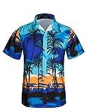 APTRO(アプトロ)アロハシャツ メンズ 半袖シャツ ハワイ風 通気速乾 UV対策 超軽量 ゆったり 花柄シャツ ST30ブルー 日本 L(タグ XL)