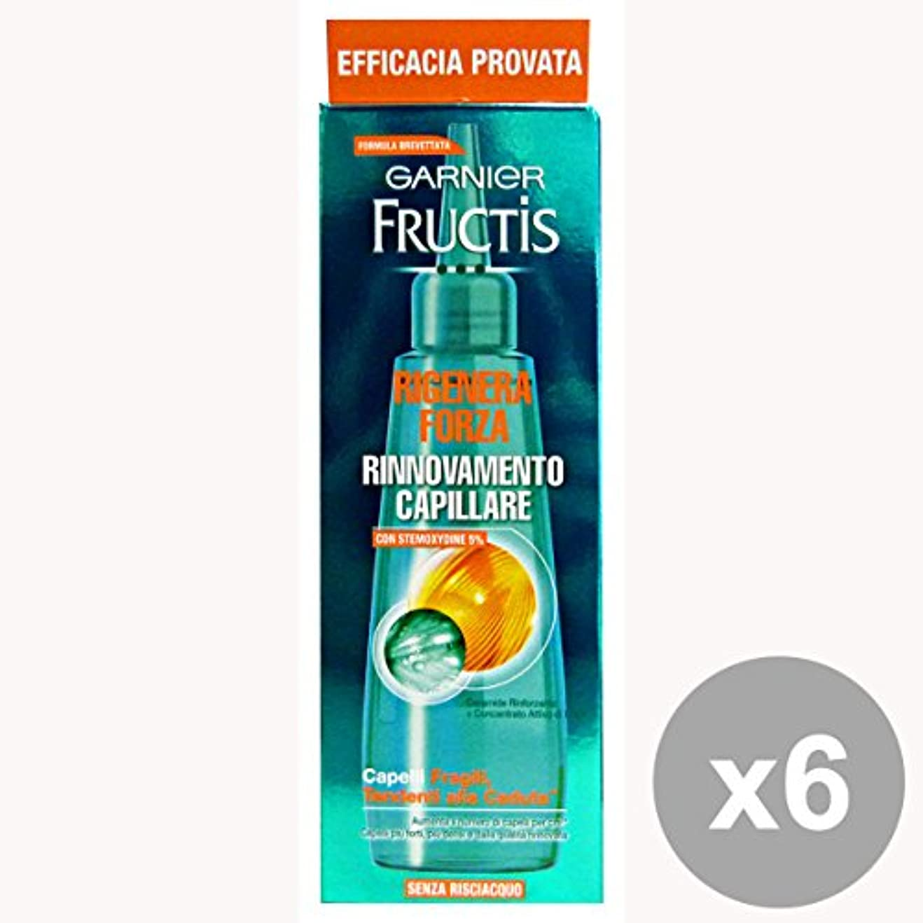 熟読するアドバンテージ災難GARNIER Set 6 Fructis Regenerieren Strength Lotion Erneuerungs Ohne Abspülen 84 Ml. Haar