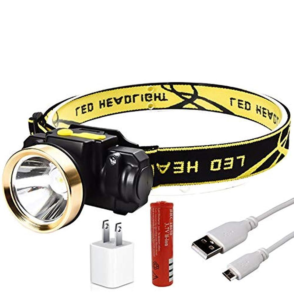 序文エスカレーターつぶやきRaiFu ヘッドランプ 10W ミニ 充電式 LED誘導 LED 屋外 キャンプ 強力な懐中電灯