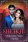The Sheikh's Unexpected Twins - A Secret Baby Romance (You Can't Turn Down a Sheikh Book 2) (English Edition)