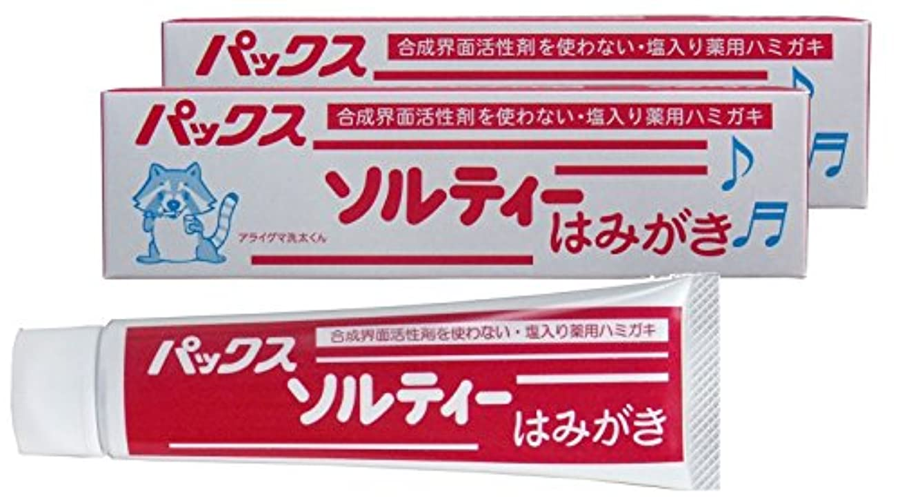 やさしく用心深い乱闘パックス ソルティーはみがき (塩歯磨き粉) 80g×2個