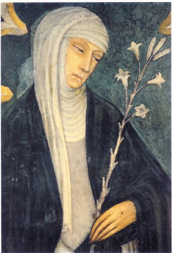 amazon co jp the dialogue of saint catherine of siena english