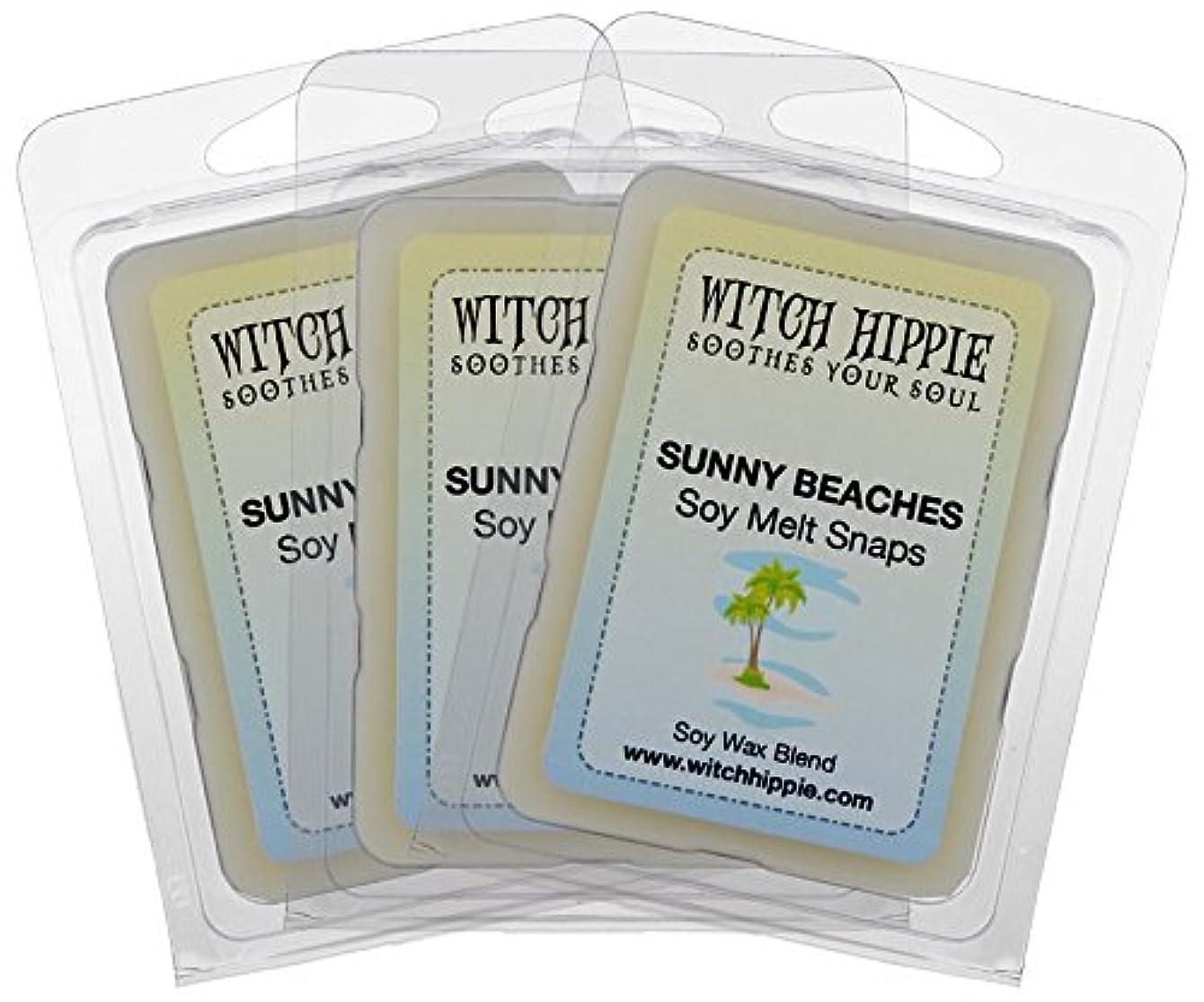 キャプションためらう宇宙Sunnyビーチ香りつきないキャンドルCandle Tarts 3パック、18自然大豆ワックスキューブby魔女ヒッピー