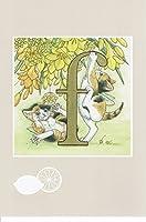 ねこの引出し 中島祥子 猫 ポストカード ●アルファベットシリーズ 「f」