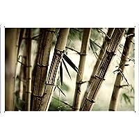竹の茎のティンサイン 金属看板 ポスター / Tin Sign Metal Poster of Bamboo Stalks