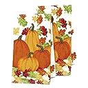 感謝祭Fall Harvest Pumpkinキッチンディッシュタオルのセット2