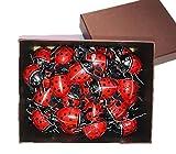 てんとう虫チョコレート 250g (5g×50個) ギフトBOX入