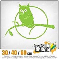 KIWISTAR - Owl on a branch - Owl on a branch 15色 - ネオン+クロム! ステッカービニールオートバイ