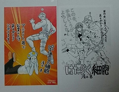 清水茜 はたらく細胞 2巻 特典 イラストカード ペーパー