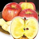 国華園 りんご 山形産 高徳 3㎏ 1箱 食品