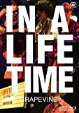 IN A LIFETIME (Blu-ray盤) 画像