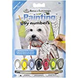 Mini Paint By Number Kit 5