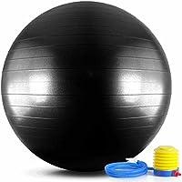 バランスボール メタルブラック 65 / 75cm 「破裂防止 アンチバースト」「 フットポンプ 付」エクササイズボール ヨガボール