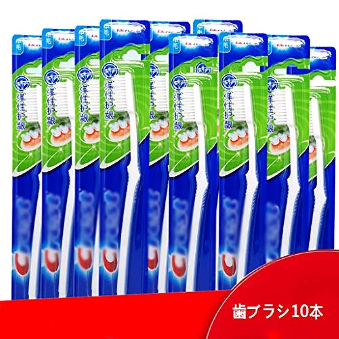 薄い改善数学大人歯ブラシ、弾性足首歯ブラシ、10パック(ランダムカラー)