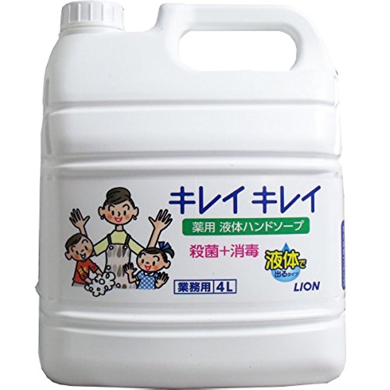 八百屋さん洪水違反するライオン 業務用 キレイキレイ 薬用ハンドソープ 4LX3本