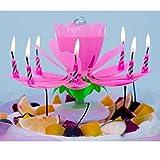 誕生日キャンドル 14個そうろく二層ある お誕生日用 ケーキ上のキャンドル+誕生日音楽+回転花