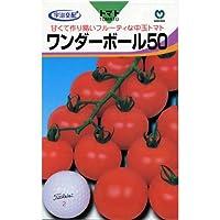 中玉トマト 種 【 ワンダーボール50 】 種子 小袋