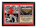 Encore Select 125–01MLB Los Angeles Angels Framed Albert Pujolsスタジアム印刷、12-inch by 18インチ (¥ 24,733)