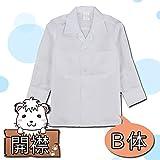 ノーブランド品 長袖 カッターシャツ 開襟シャツ B体 日本製 スクール シャツ 学生用シャツ Yシャツ ワイシャツ 42910 160cmB