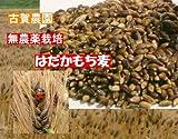 ご飯が美味しくなるモッチリ食感 古賀農園 (佐賀県)国産無農薬もち麦(玄麦)2kg(1kgx2)