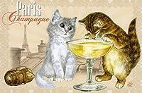 ねこの引出し フランス製猫のポストカード  ★Paris Champagne