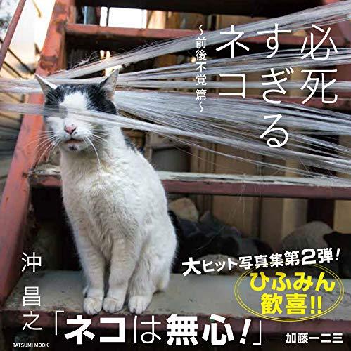 必死すぎるネコ ~前後不覚 篇~ (タツミムック)
