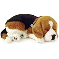 Beagle Animated Pet by Perfect Petzzz