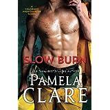 Slow Burn: A Colorado High Country Novel: 2