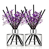Cocod'or Preserved Real Flower Reed Diffuser, Garden Lavender Reed Diffuser, Reed Diffuser Set, Oil Diffuser & Reed Diffuser Sticks, Home Decor & Office, 2 Pack