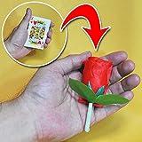 ◆手品?マジック◆ロッキング カードトゥローズ◆C5055