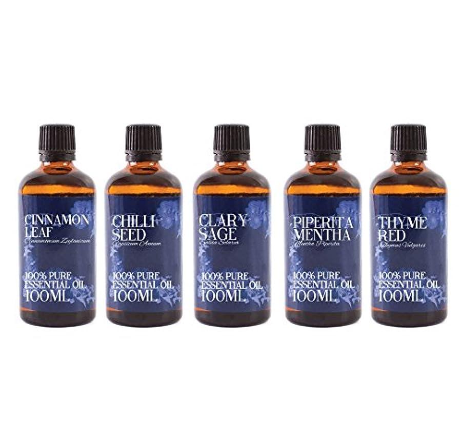 平和的センブランススラムMystic Moments | Gift Starter Pack of 5 x 100ml Herb & Spice Essential Oils in Wooden Box