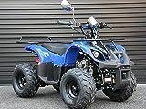 IceBear(アイスベアー) 四輪バギー ATV 50cc 前進1速バック付 ミニカー登録 公道走行可 青 HL50BL