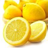 広島 レモン 3kg 有機肥料栽培 防カビ剤不使用 れもん